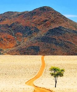 Desert Of Namibia paint by numbers