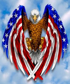 Eagle American Flag paint by numbers