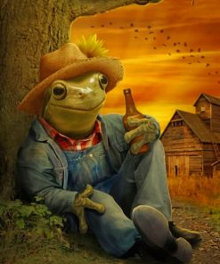Farmer Frog Paint by numbers