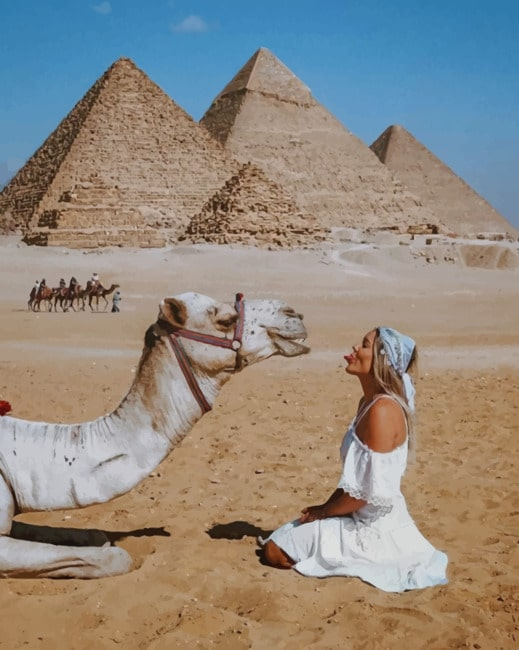 Girl And Camel In Egypt The Great Pyramid Of Giza Egypt paint by numbers