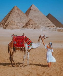 Girl And Camel In Egypt The Great Pyramid Of Giza paint by numbers