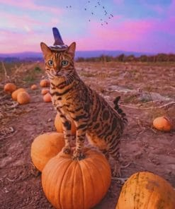 Bengal Cat Celebrating The Halloween Paint by numbers