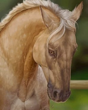 Beige Horse Paint by numbers