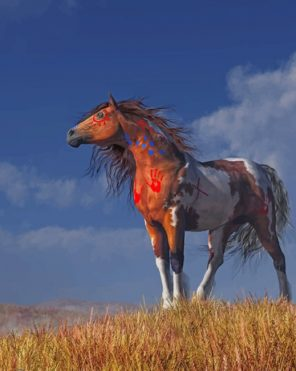 Horse With War Paint Paint by numbers