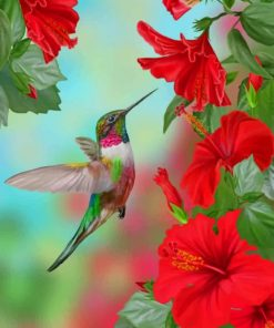 Hummingbird And Flowers paint by numbers