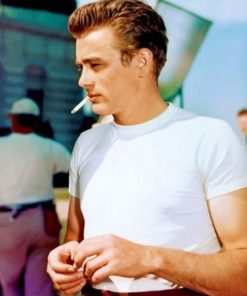 James Dean Paint by numbers