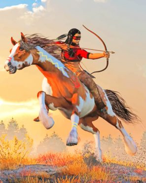 Native Man On Horse paint by numbers