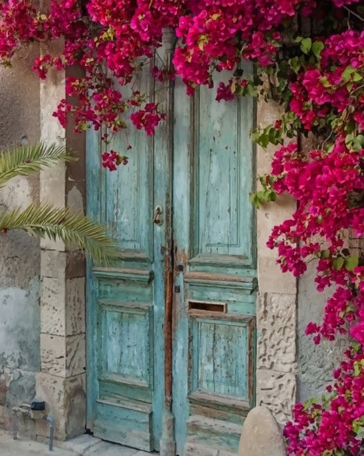 Old Doorways With Flowers - NEW Paint By Numbers - Numeral Paint