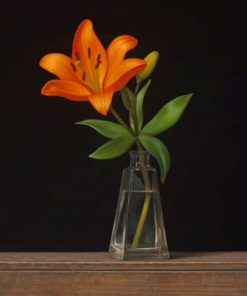 Orange Flower In A Glass Vase Paint by numbers