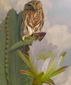 Owl And Cactus Paint by numbers