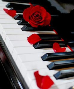 Piano And Red Rose paint by numbers