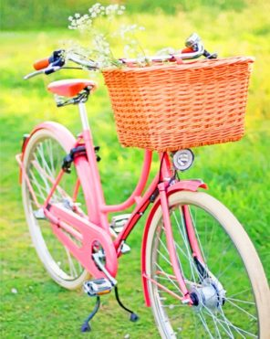 Pink Bicycle With Basket paint by numbers
