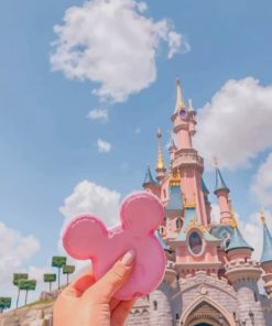 Pink Biscuit Sleeping Beauty Castle Paint by numbers