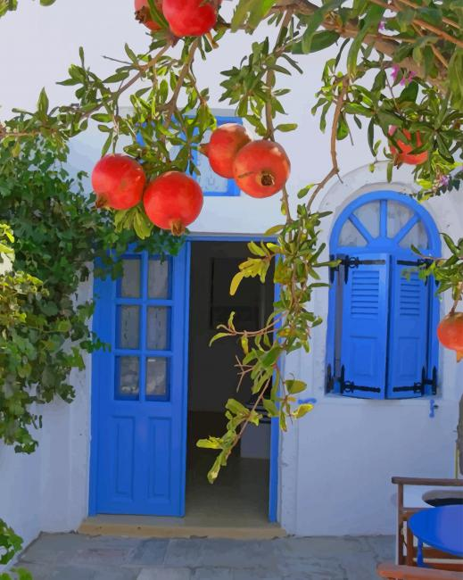 Pomegranate Tree In Santorini Paint By Numbers