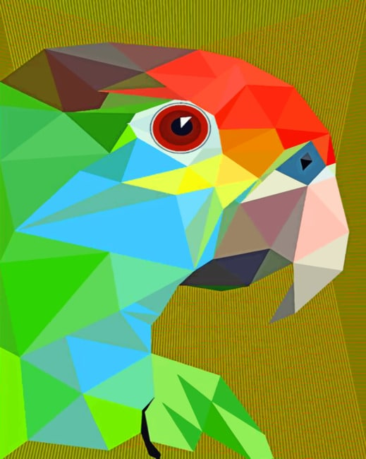 Pop Art Parrot paint by numbers