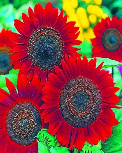 Red Sunflowers paint by numbers