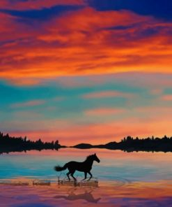 Running Horse Silhouette Paint by numbers