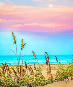 South Padre Island Sunset paint by numbers