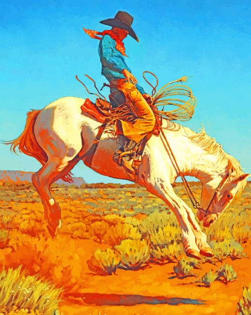 Western Native On Horse paint by numbers