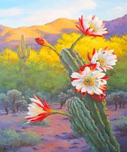 White Red Flowers And Cactus Paint by numbers