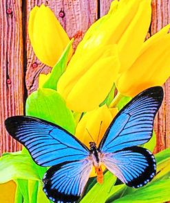 Yellow Tulip And Blue Butterfly paint by numbers