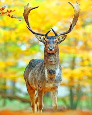Deer In Autumn Forest Paint by numbers
