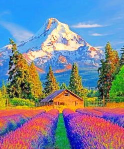Colorful Fields And Mountains paint by numbers