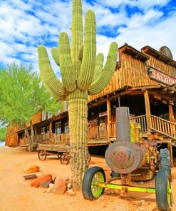 Goldfield Ghost Town and Mine Tours Inc paint by numbers
