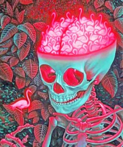 Aesthetic Skull Paint by numbers