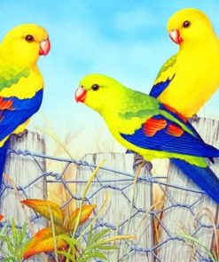 Aesthetic Parrots Paint by numbers