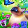 Cat And Blue Butterfly Paint by numbers