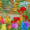Colorful Flowers paint by numbers