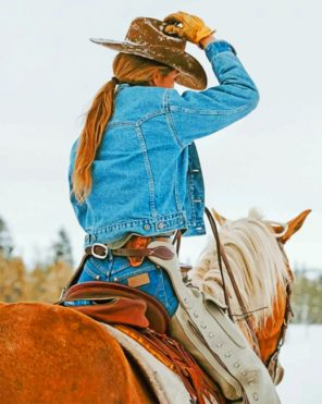 Cowgirl Paint by numbers