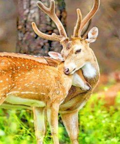 Cute Deers Hugging Paint by numbers