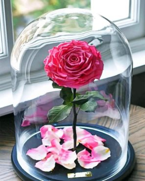 Enchanted Rose paint by numbers