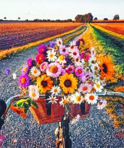 Flowers And Bike paint by numbers