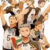 Fukurodani Team Paint by numbers