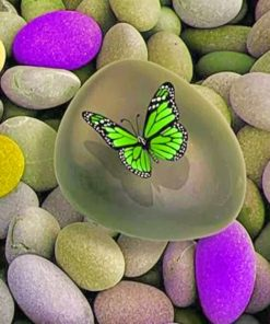 Green Butterfly paint by numbers