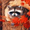 Raccoon In The Fall paint by numbers