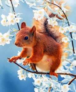 Red Squirrel With Flowers paint by numbers