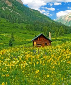 Cabin in nature paint by numbers