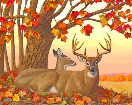 Deer in autumn paint by numbers