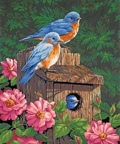 Garden Bluebirds paint by numbers