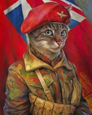 Military Cat Art paint by numbers