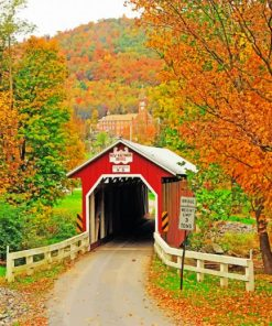 New Baltimore Covered Bridge paint by numbers
