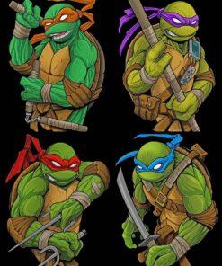 Ninja Turtles paint by number