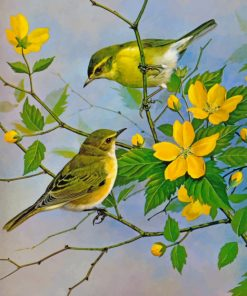 Yellow Finch Birds paint by number