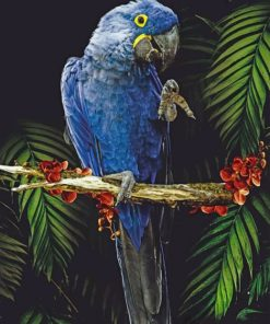 Blue Parrot Paint by numbers