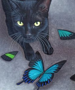 Black Cat And Butterflies Paint by numbers