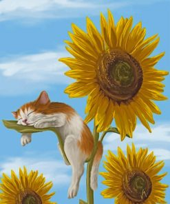 Sleepy Cat And Sunflowers Paint by numbers